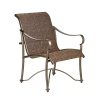 Tuscan Villa Dining Chair Marino Arm