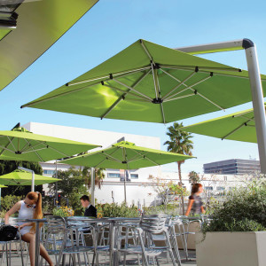 Green Cantilever Umbrellas